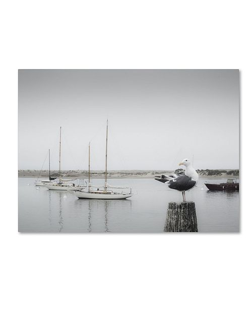 "Trademark Global Moises Levy 'Four Boats & Seagull' Canvas Art - 32"" x 24"" x 2"""