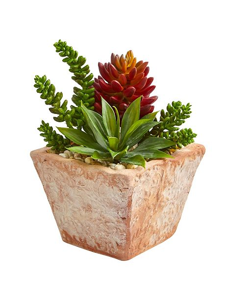 """Nearly Natural 11"""" Mixed Succulents Artificial Plant in Small Terra Cotta Vase"""