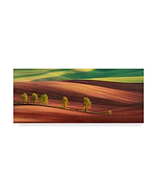 "Jan Smid 'Odyssey Of An Avenue' Canvas Art - 10"" x 24"" x 2"""