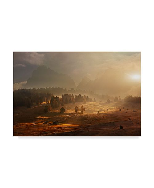 "Trademark Global Daniel Rericha 'Morning On Alpine Keadow' Canvas Art - 32"" x 22"" x 2"""