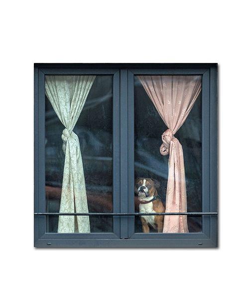"""Trademark Global Jef Van Den 'Looking For His Buddy' Canvas Art - 35"""" x 35"""" x 2"""""""