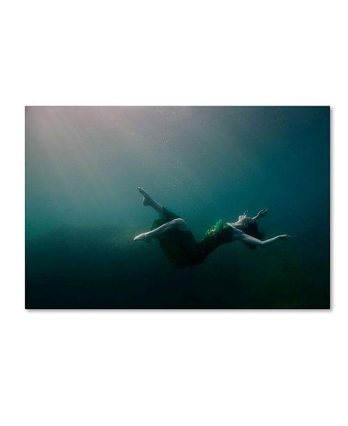 "Trademark Global Michal Lindner 'Fall Of Beauty' Canvas Art - 24"" x 16"" x 2"""