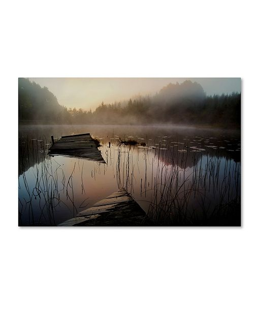 """Trademark Global Willy Marthinussen 'In The Misty Morning' Canvas Art - 24"""" x 16"""" x 2"""""""