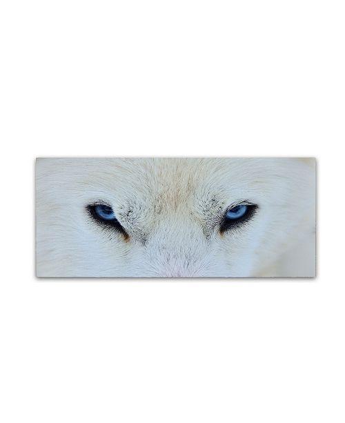 "Trademark Global Miquel Angel Artus 'Mirada Azul' Canvas Art - 32"" x 14"" x 2"""