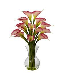 Gala Calla Lily w/Vase Arrangement