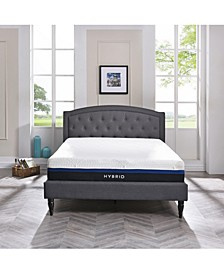 "Vanetia 11.5"" Medium Firm Hybrid Mattress- Full"
