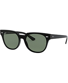 Sunglasses, RB4368N 39