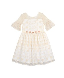 Laura Ashley Toddler and Little Girl's Embroidered Mesh Dress