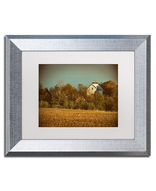 "Trademark Global PIPA Fine Art 'Abandoned Barn In The Trees' Matted Framed Art - 11"" x 14"""