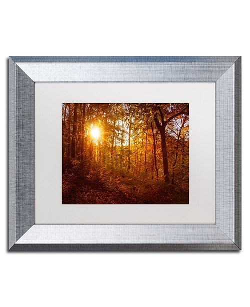 "Trademark Global PIPA Fine Art 'Autumn Sunset' Matted Framed Art - 11"" x 14"""
