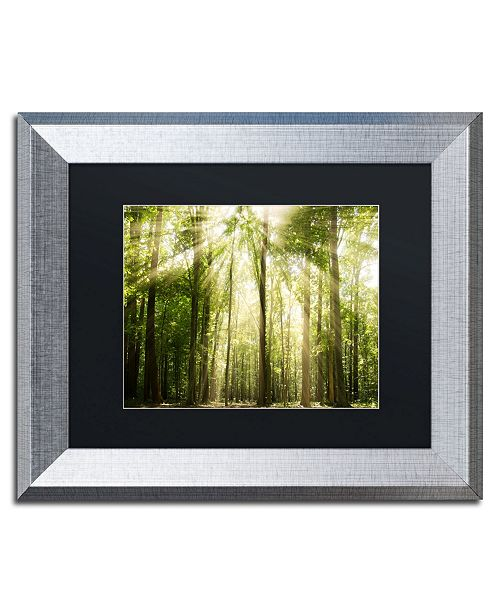 "Trademark Global PIPA Fine Art 'Sunrays Through Treetops' Matted Framed Art - 11"" x 14"""