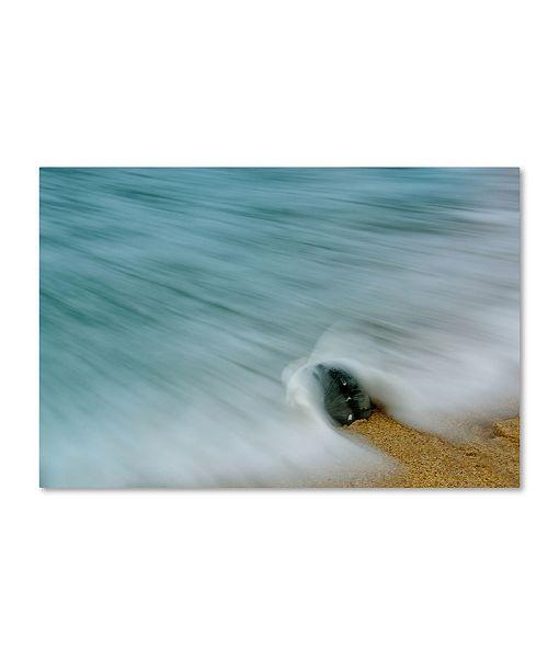 "Trademark Global PIPA Fine Art 'Whelk Seashell and Misty Wave' Canvas Art - 12"" x 19"""
