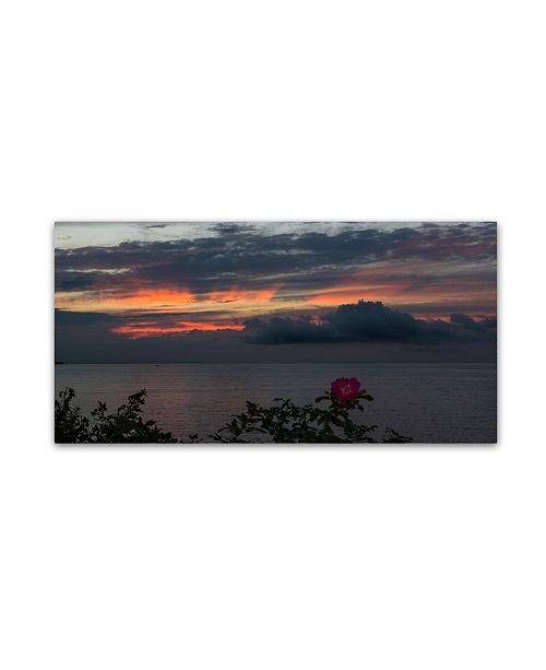 "Trademark Global Kurt Shaffer 'Last of Summer Rose Sunset' Canvas Art - 10"" x 19"""