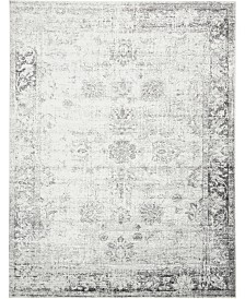 Bridgeport Home Basha Bas1 Gray 9' x 12' Area Rug