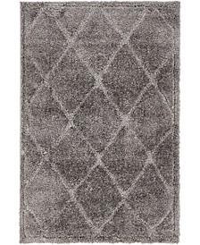 Filigree Shag Fil1 Dark Gray 4' x 6' Area Rug