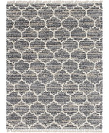 Bridgeport Home Lochcort Shag Loc1 Gray 9' x 12' Area Rug