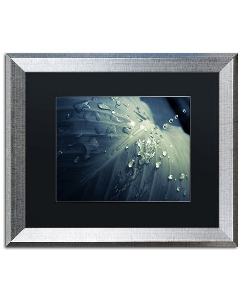 "Trademark Global PIPA Fine Art 'Rain Dropping on Canna Leaf' Matted Framed Art - 16"" x 20"""