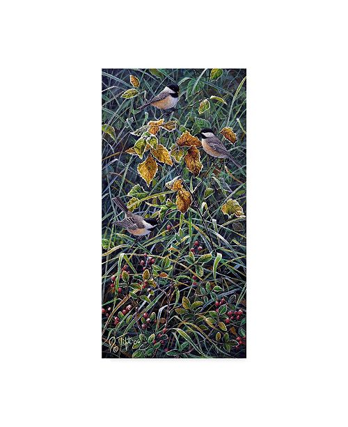 "Trademark Global Jeff Tift 'Chickadee' Canvas Art - 16"" x 32"""
