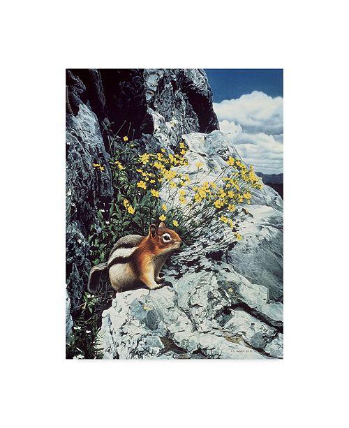"""Trademark Global Ron Parker 'Mountain Bloom Ground Squirrel' Canvas Art - 18"""" x 24"""""""