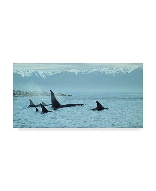 "Trademark Global Ron Parker 'Silent Passage Orcas' Canvas Art - 16"" x 32"""