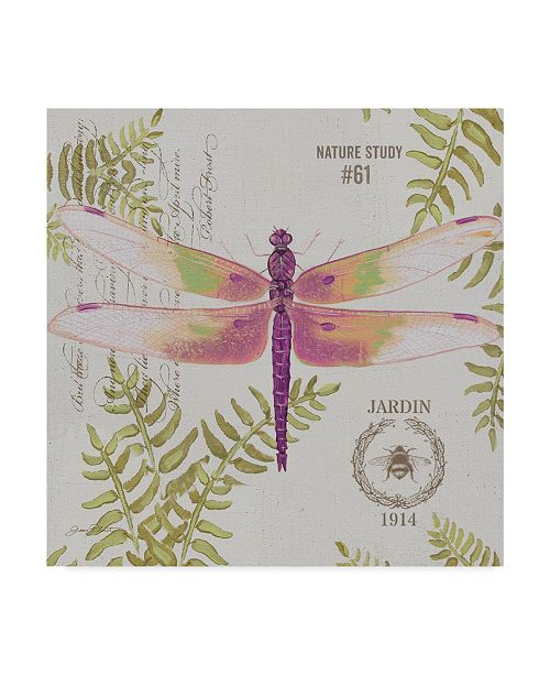 """Trademark Global Jean Plout 'Botanical Dragonfly 1' Canvas Art - 24"""" x 24"""""""