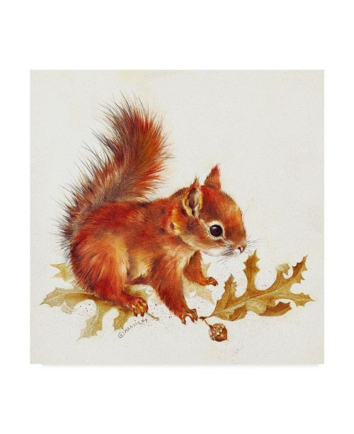 """Trademark Global Peggy Harris 'Red Squirrel Centered' Canvas Art - 14"""" x 14"""""""