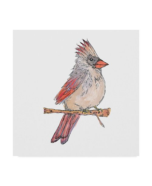"Trademark Global Jessmessin 'White Cardinal' Canvas Art - 35"" x 35"""