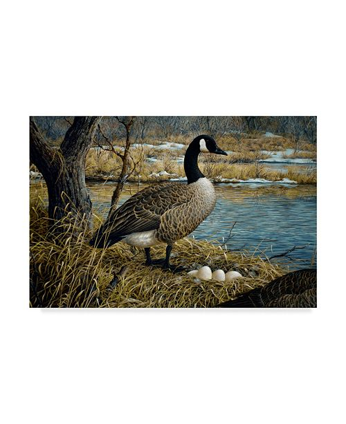 "Trademark Global Jeff Tift 'Canadian Goose' Canvas Art - 22"" x 32"""
