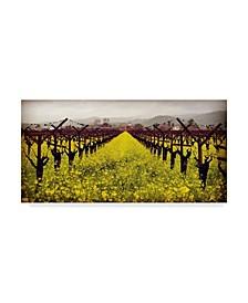 """Lance Kuehne 'Frogs Leap' Canvas Art - 24"""" x 47"""""""