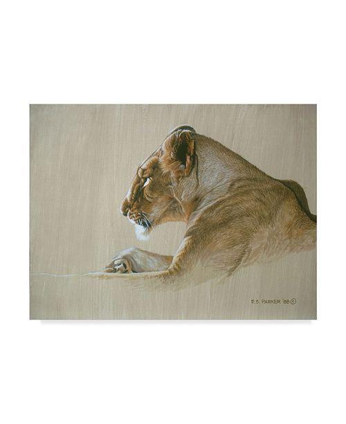 "Trademark Global Ron Parker 'Lioness' Canvas Art - 35"" x 47"""