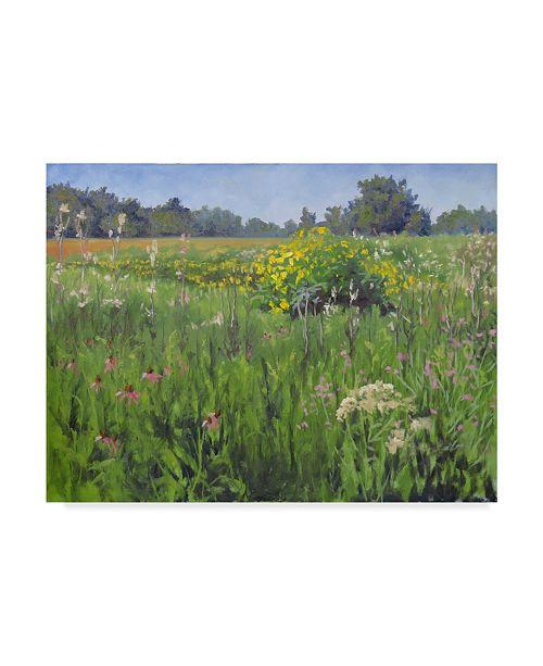 "Trademark Global Rusty Frentner 'Flower Field' Canvas Art - 24"" x 32"""