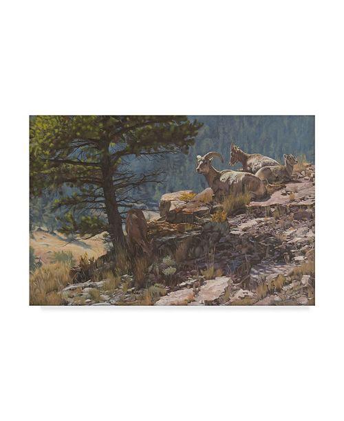"Trademark Global Rusty Frentner 'Mountains Goats' Canvas Art - 30"" x 47"""