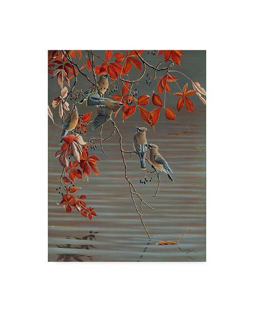 """Trademark Global Wilhelm Goebel 'Autumn Harvest Cedar Waxwing' Canvas Art - 35"""" x 47"""""""