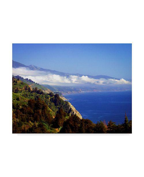 "Trademark Global J.D. Mcfarlan 'Big Sur, CA' Canvas Art - 32"" x 24"""