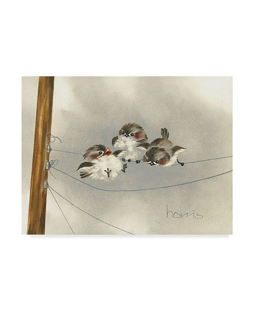 """Trademark Global Peggy Harris 'One Ringy Dingy' Canvas Art - 47"""" x 35"""""""
