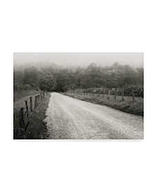 "Nicholas Bell Photography 'Timeless Drive' Canvas Art - 32"" x 22"""