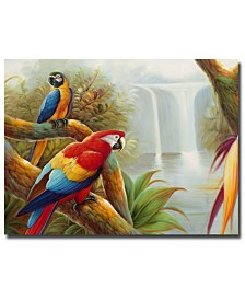"Rio 'Amazon Waterfall' Canvas Art - 47"" x 35"""