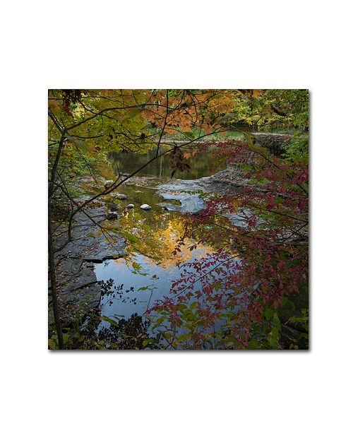"Trademark Global Kurt Shaffer 'Why I Love Autumn 3' Canvas Art - 35"" x 35"""