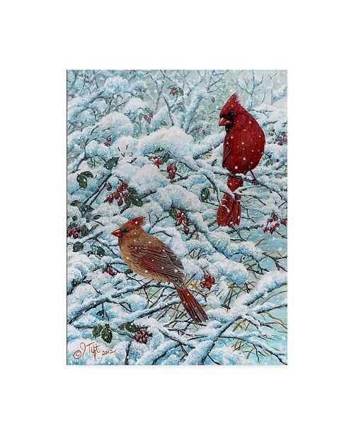 "Trademark Global Jeff Tift 'Winter Cardinal Painting' Canvas Art - 14"" x 19"""