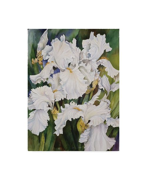 "Trademark Global Joanne Porter 'White Iris' Canvas Art - 14"" x 19"""