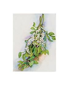 """Joanne Porter 'Mistletoe' Canvas Art - 14"""" x 19"""""""