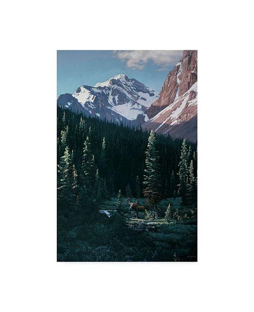 "Trademark Global Ron Parker 'Haidok Peak' Canvas Art - 12"" x 19"""