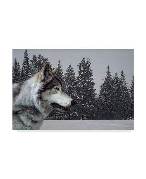 "Trademark Global Ron Parker 'Wolf Portrait' Canvas Art - 12"" x 19"""