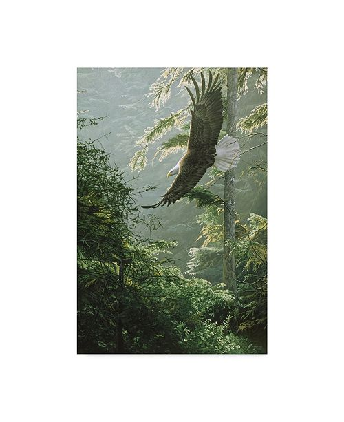 "Trademark Global Ron Parker 'Morning Flight Eagle' Canvas Art - 12"" x 19"""