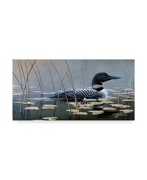 """Trademark Global Wilhelm Goebel 'Loon In Reeds' Canvas Art - 10"""" x 19"""""""