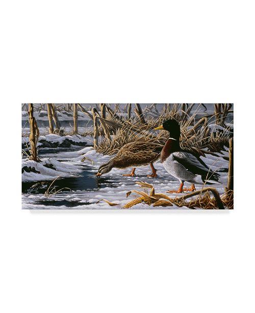 "Trademark Global Wilhelm Goebel 'Spring Thaw Mallards' Canvas Art - 12"" x 24"""