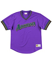 Men's Arizona Diamondbacks Mesh V-Neck Jersey