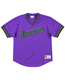 Mitchell & Ness Men's Arizona Diamondbacks Mesh V-Neck Jersey