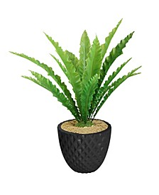 "37.6"" Real Touch Agave in Fiberstone Planter"