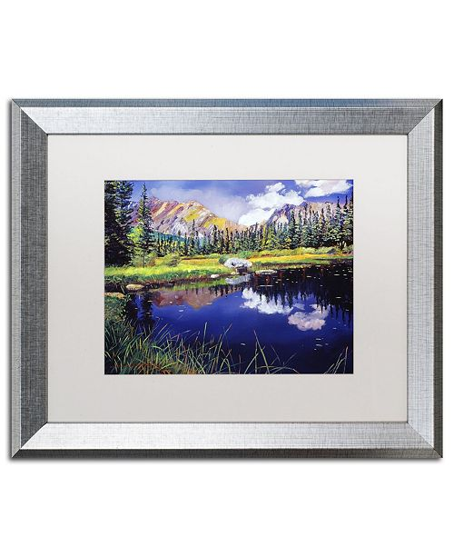 "Trademark Global David Lloyd Glover 'Reflections in Solitude' Matted Framed Art - 16"" x 20"""